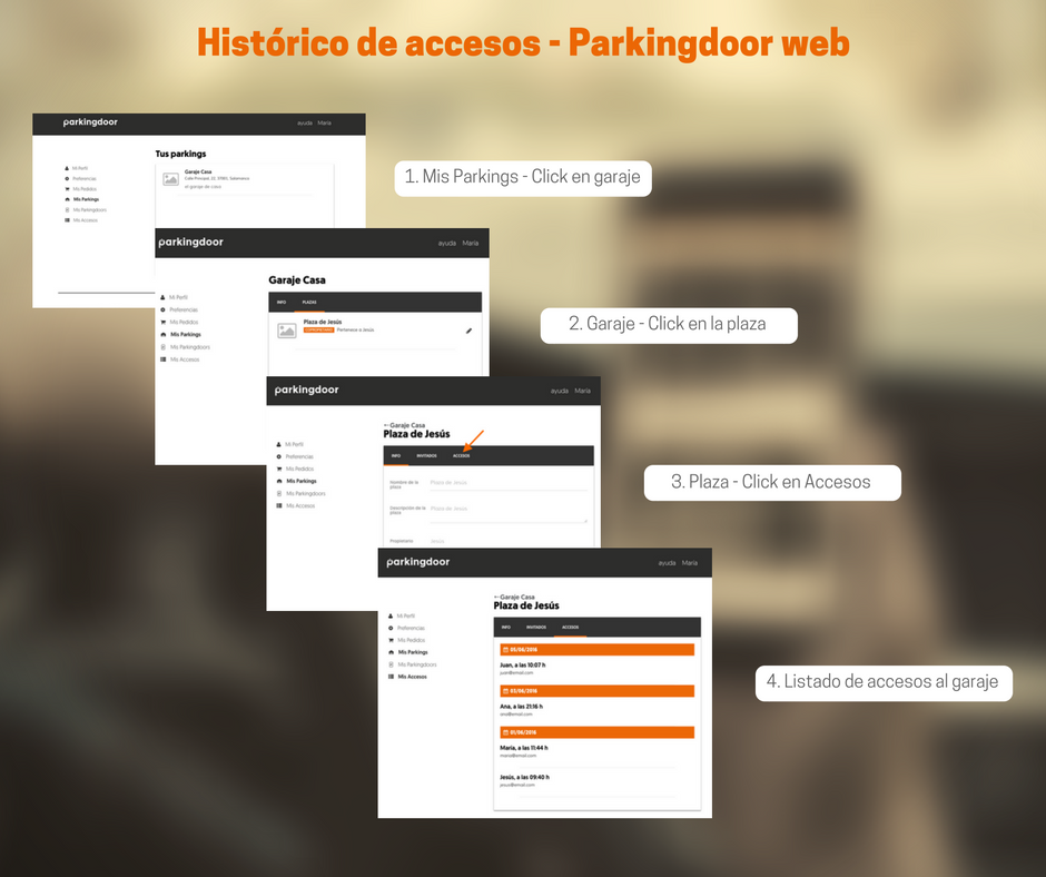 Consultar registro accesos web Parkingdoor
